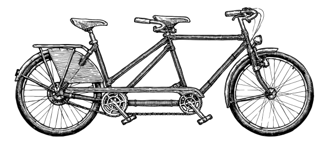 Tandem Bicycle. Vector Ink Hand Drawn Illustration Of Twin Bike